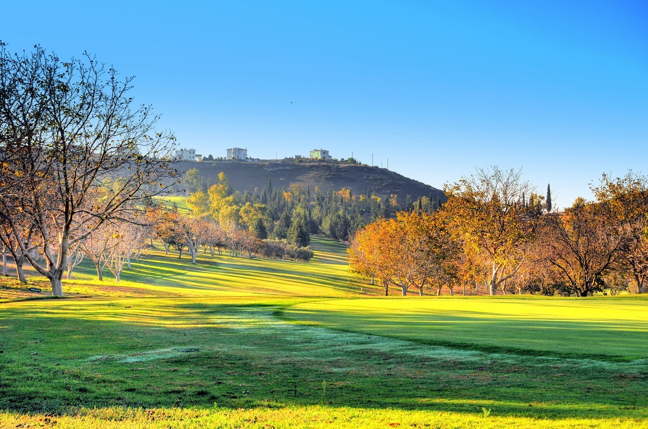 Minthis Golf